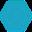 Sentinel Protocol logo